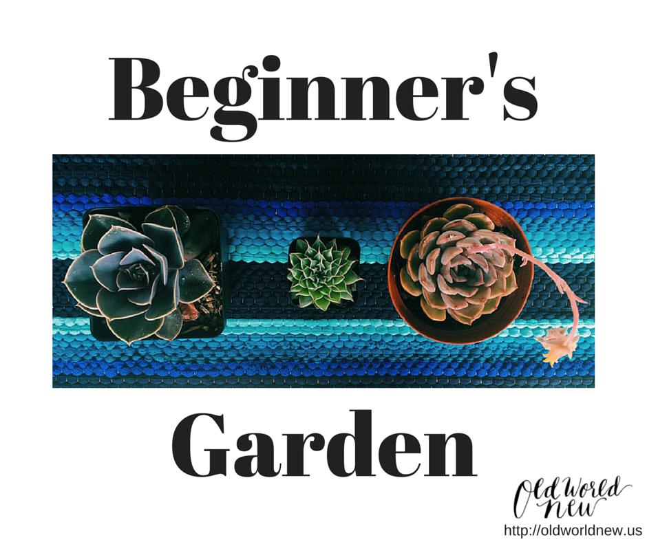 Begginner's-garden