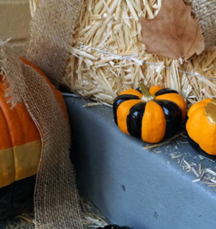 Halloween No-Carve Pumpkin Decorating DIY
