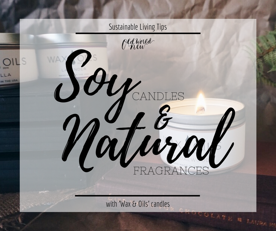 wax & oils soy candles soy wax sustainable candles