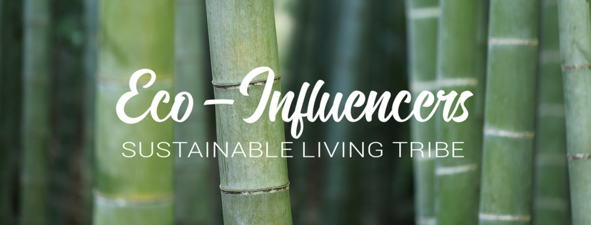 eco-influencer sustainable living tribe