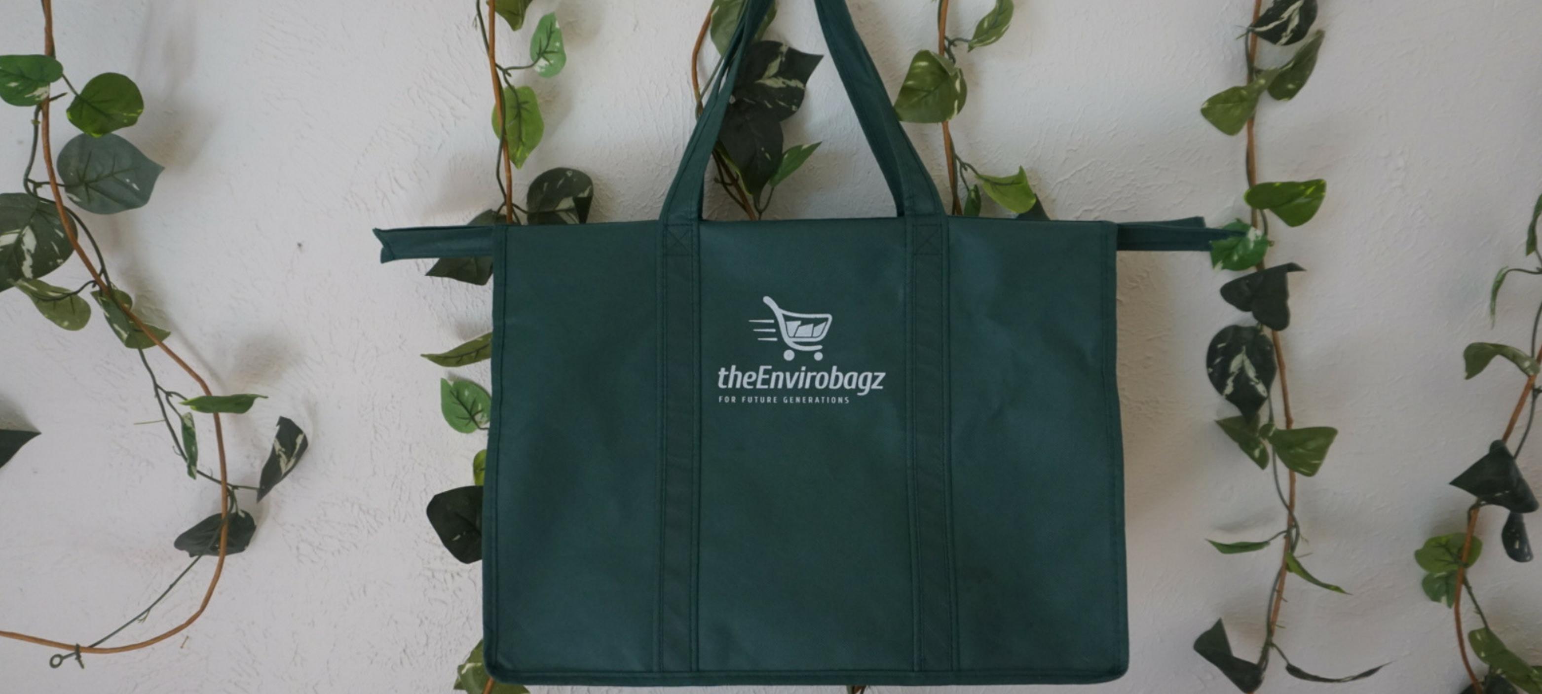 19 Plastic Alternatives |  Reusable Shopping Bags