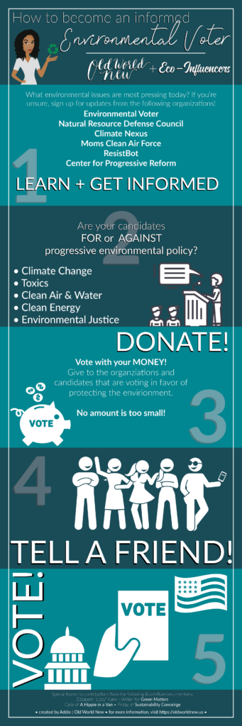 environmental policy infographic - sustainable living - environmental voter