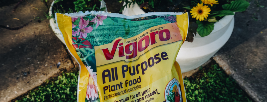vigoro plant food at the home depot