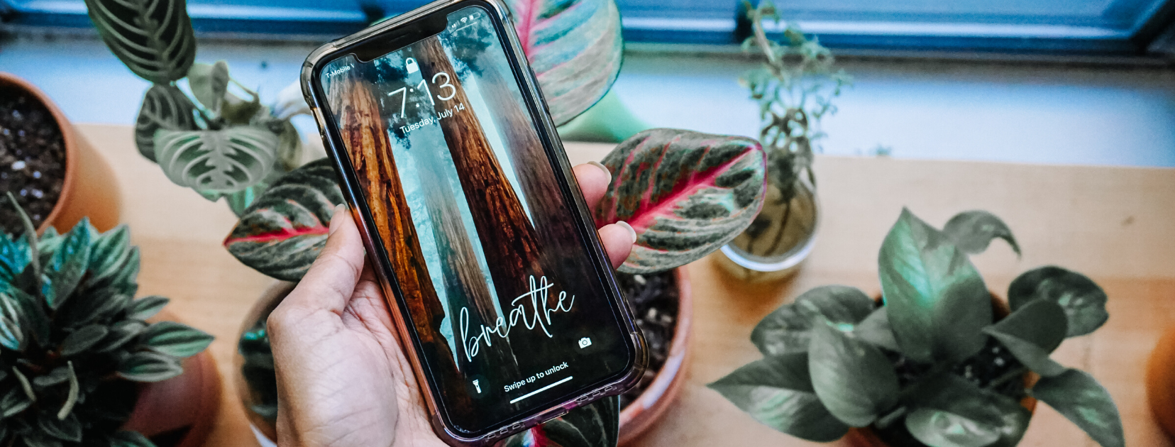 iphone screen savers inspired by nature