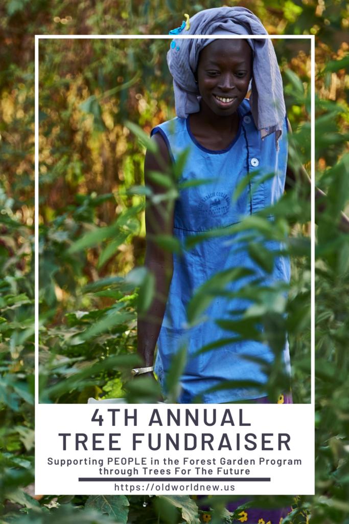 4th Annual Tree Fundraiser