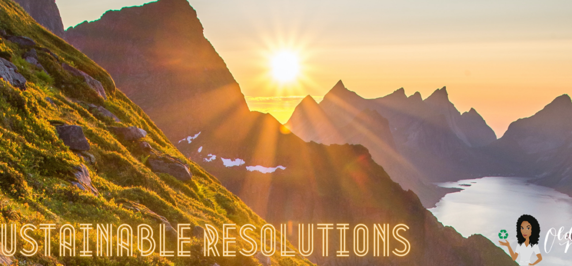 21 Sustainable Things In 2021 (Sustainable Resolutions)